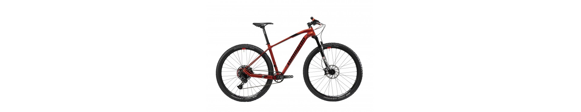 mountain bike front