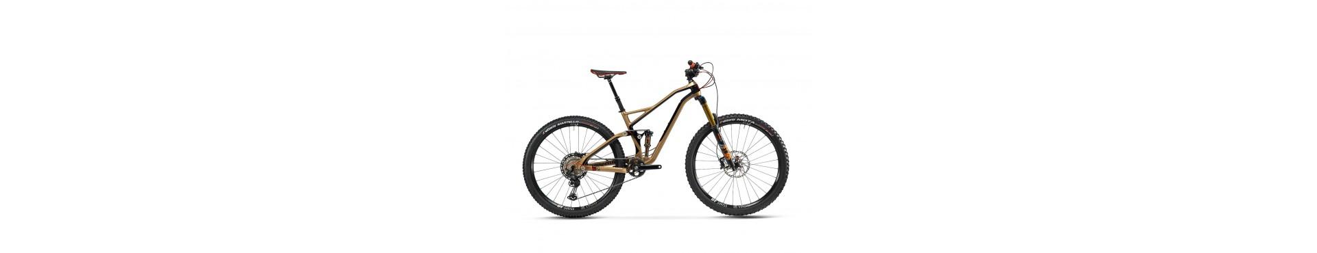 Mountain bike doppio ammortizzata